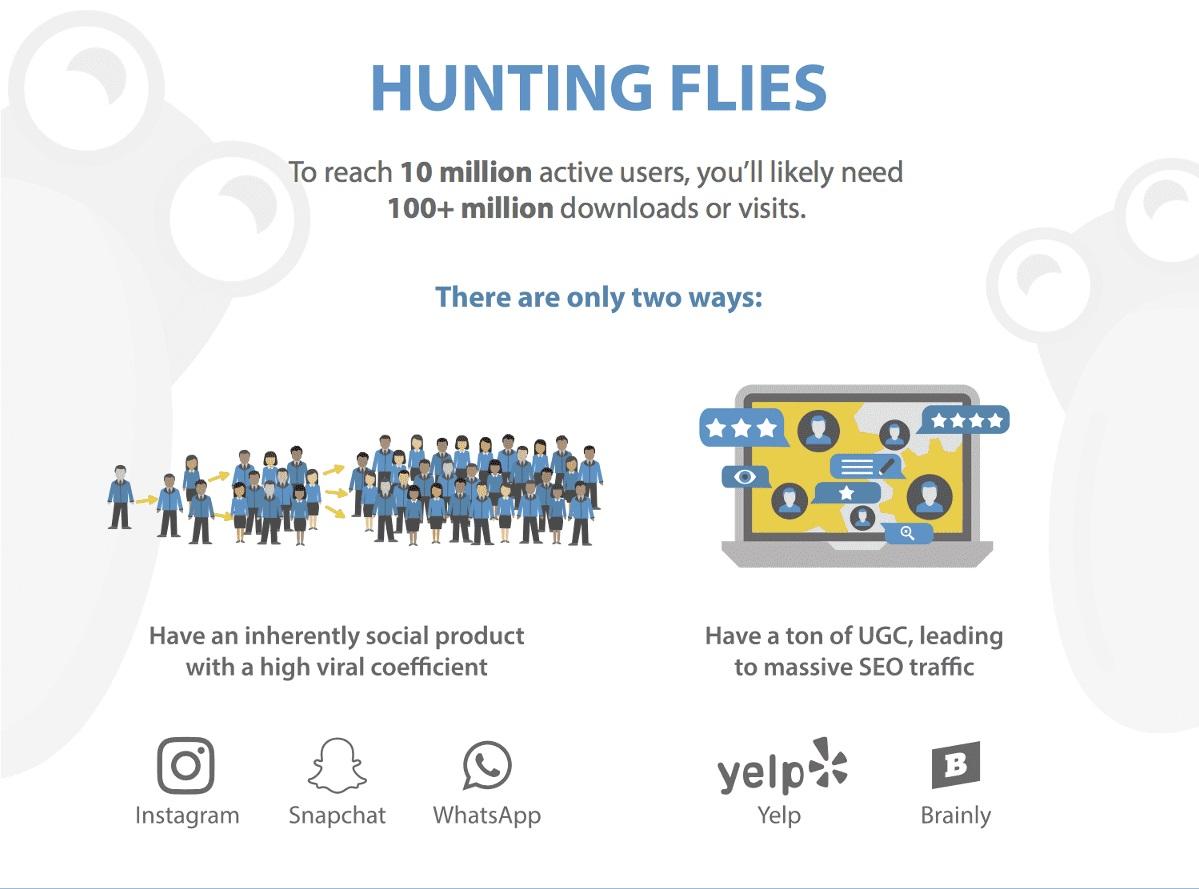 1 Hunting Flies